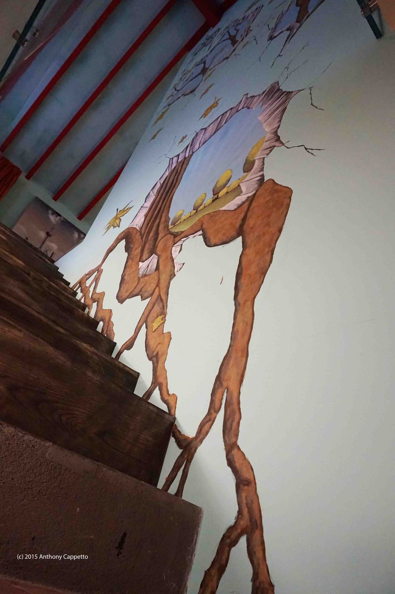 ACappetto Geneva 3D Illusionary Mural Full Piece 2 481wms